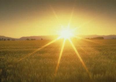 Solano Sunset